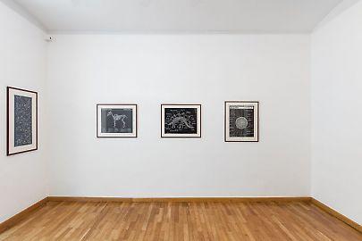 georg-kargl-fine-arts2021mark-dion23installation-view.jpg