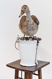 georg-kargl-fine-arts2021mark-dion10an-account-of-the-collector-in-a-white-bucket-duck.jpg