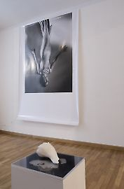 curatedby-08.jpg