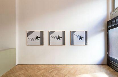 georgkargl-reduction-photobymatthiasbildstein-ild3257.jpg