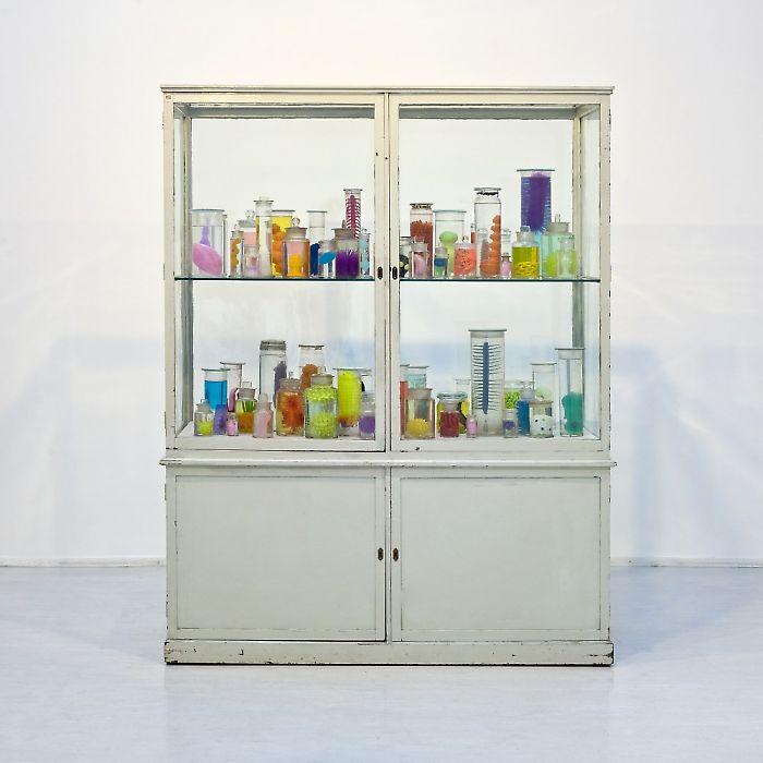 Mark Dion Galerie Georg Kargl